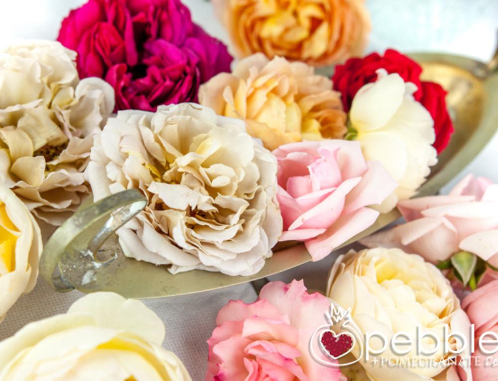 Organica Floret roses… The Sunshine Coast's own secret garden